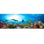 3D декоративно покритие за баня – Коралов риф 6