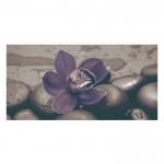 Плочки декор с размери 25 x 50 см. Неос Black orchid