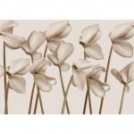 Тапети с цветя GRACE (Glamora)