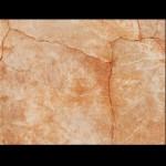 Стилни плочки за стена с размери 25 x 33 см. Сиена